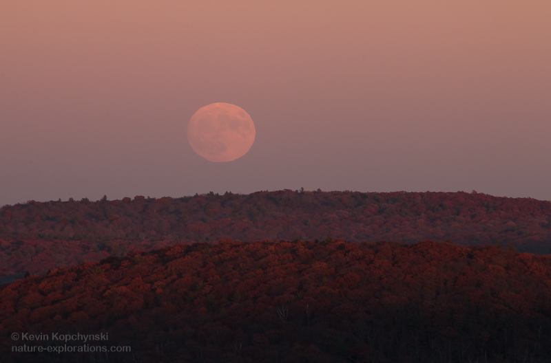 Supermoon in the Belt of Venus