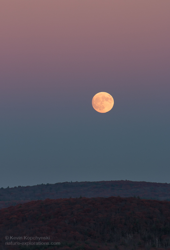 Supermoon in the Earth's Shadow