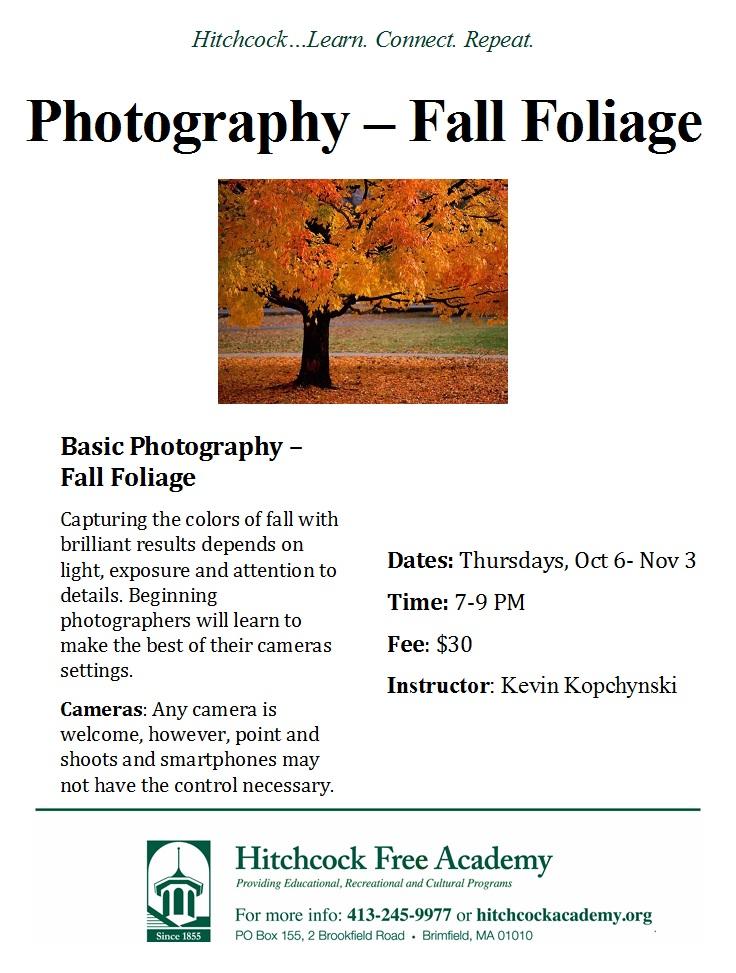 photography-fall-foliage